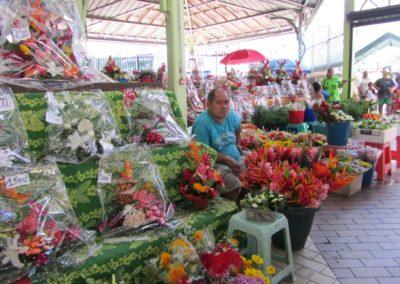 18 ppt market