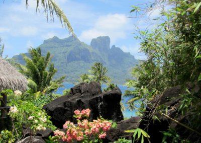 Discover Polynesia (2)
