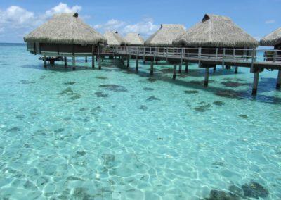 Discover Polynesia 5